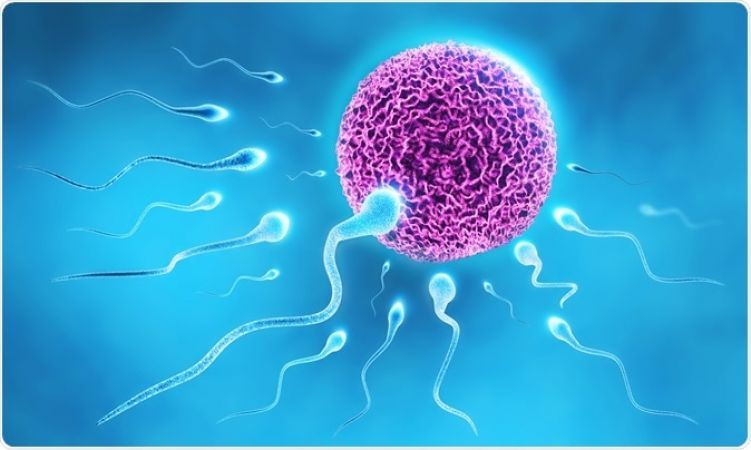low sperm count is the indicator of poor health