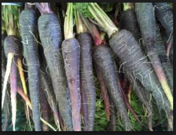 Black carrots, A Perfect Solution To Your Digestive Problems