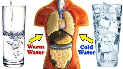 Know Cold Water vs. Hot Water which is best for weight loss