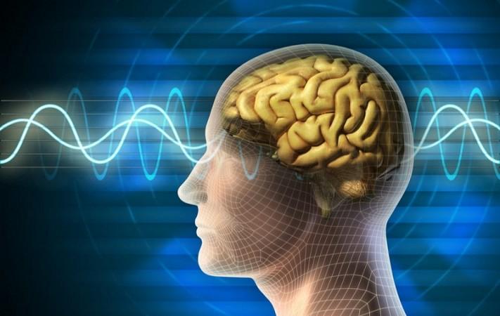 शोधकर्ताओं ने विकसित किया नया ब्रेन-लाइक कम्प्यूटिंग डिवाइस