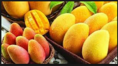 Unbeatable health benefits to eat more mangoes in this summer