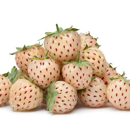 Amazing health benefits of pineberries