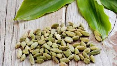 Drink cardamom water to reduce weight; know other benefits