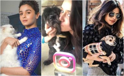 Bollywood's love for pets