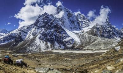 Viral Video: Watch this video before planning a trip to go to the Himalayas