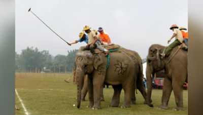 Elephant Lovers Head towards to Nepal's Chitwan district; incredible activities lined-up