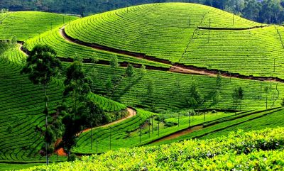 Awesome, Attractive, Breeze Hill Station In Maharastra