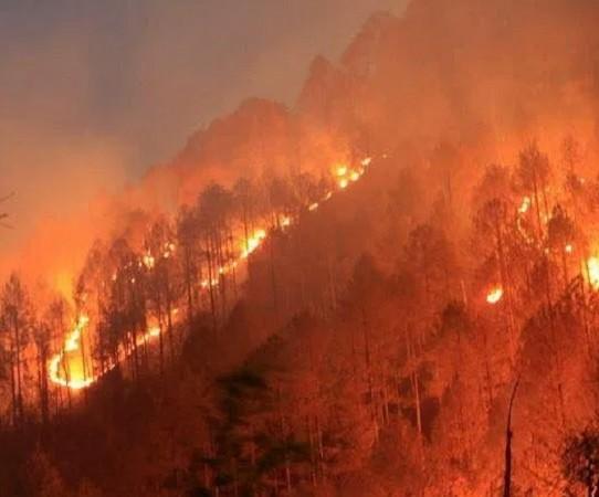 उत्तराखंड में नहीं थम रही आग, कई इलाकों में फैला खौफ