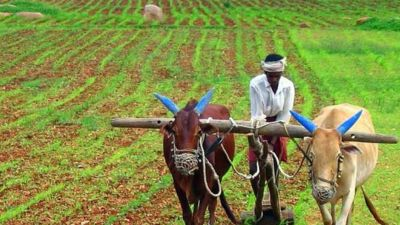 The farmers of this state will get a big gift today, will get 25 thousand directly in account