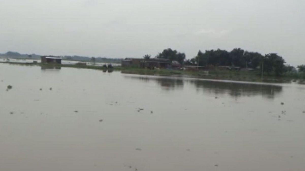 Heavy rain continues in Madhya Pradesh, Met Office warning raises people's hardships