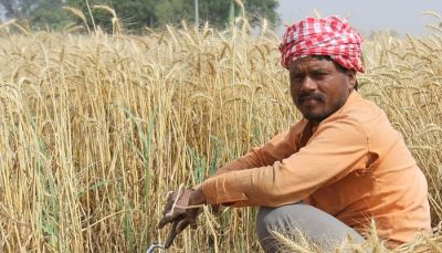 Jharkhand government's big gift to farmers, money directly deposited in bank accounts