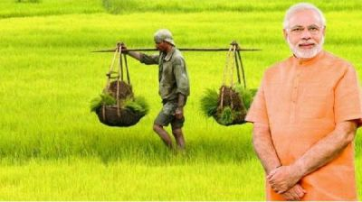 Central government to make amendments in Fasal Beema Yojana, provides convenience to farmers!
