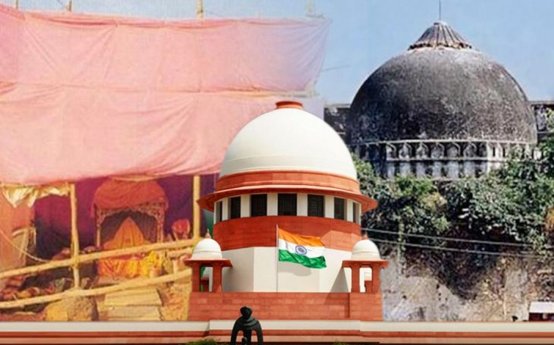 Ayodhya case: 'Evidence of Hindu temple found in excavation' counsel for deity to SC