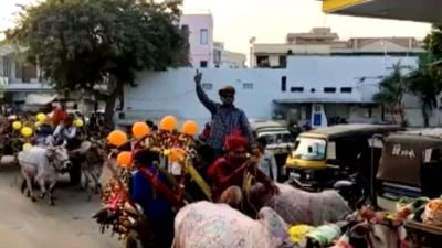 Rajasthan: 35 bullock convoys walked with the groom in this unique Marwari procession