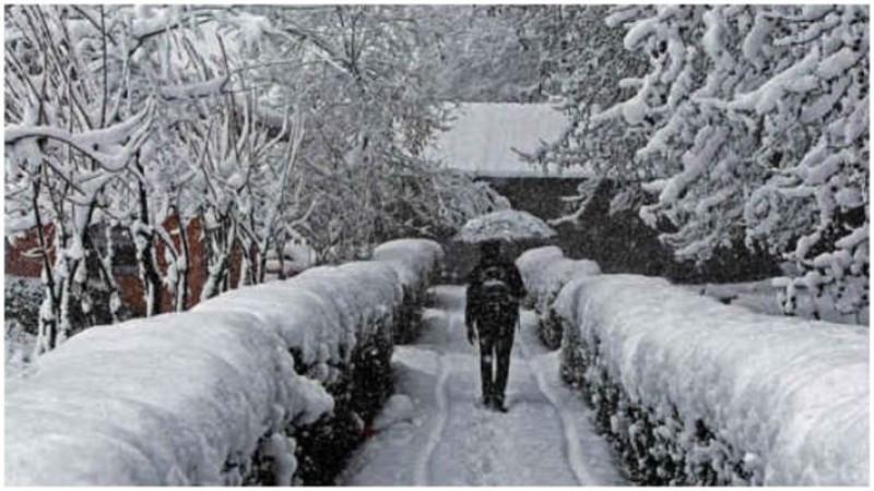 श्रीनगर में सर्दी ने तोड़ा 25 सालों का रिकॉर्ड,  डल झील पूरी तरह जमी