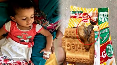 lizard found in Parle- G biscuit, two-and-a-half-year-old girl gets sick