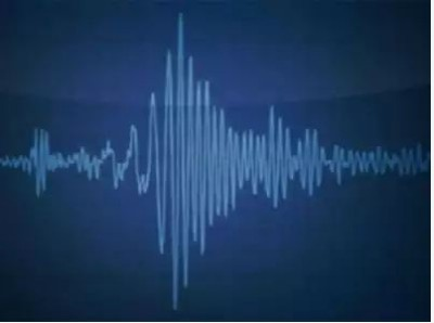 Earthquake measuring 4.6 on Richter scale jolts Mizoram