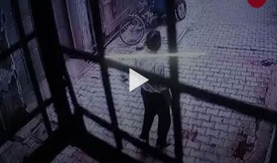 Monekys wreaks havoc in  Vrindavan, people are in terror