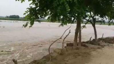 Bihar: Mahananda flows above the danger mark, the medical team on alert
