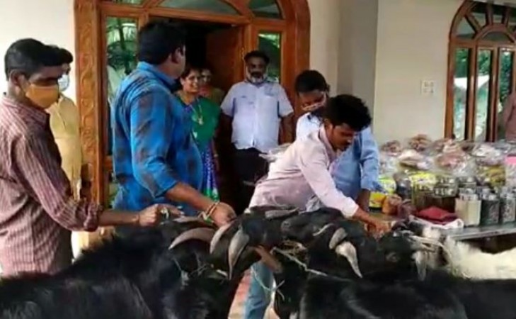 From 1000 kg fish to 10 goats, the newlyweds received gifts that stunned people | NewsTrack English 1