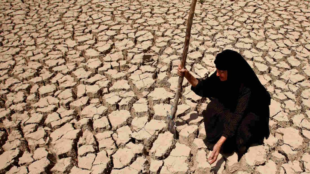 Water in Rajasthan will end in four years: Land Water Department