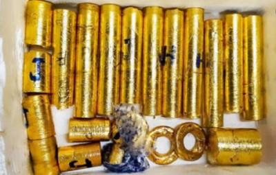 Kerala gold smuggling: Former IAS officer M Shivshankar suspended, NIA questioned