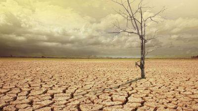 Drought-like conditions in Chhattisgarh, farmers' problems escalate!