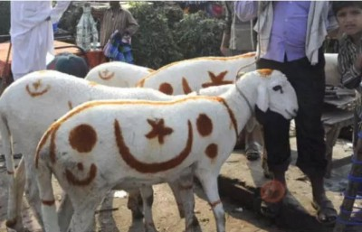 BJP MLA makes a controversial statement on Bakrid
