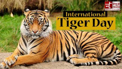अंतर्राष्ट्रीय बाघ दिवस: बाघों के लिए मशहूर है भारत, जानिए रोचक बातें