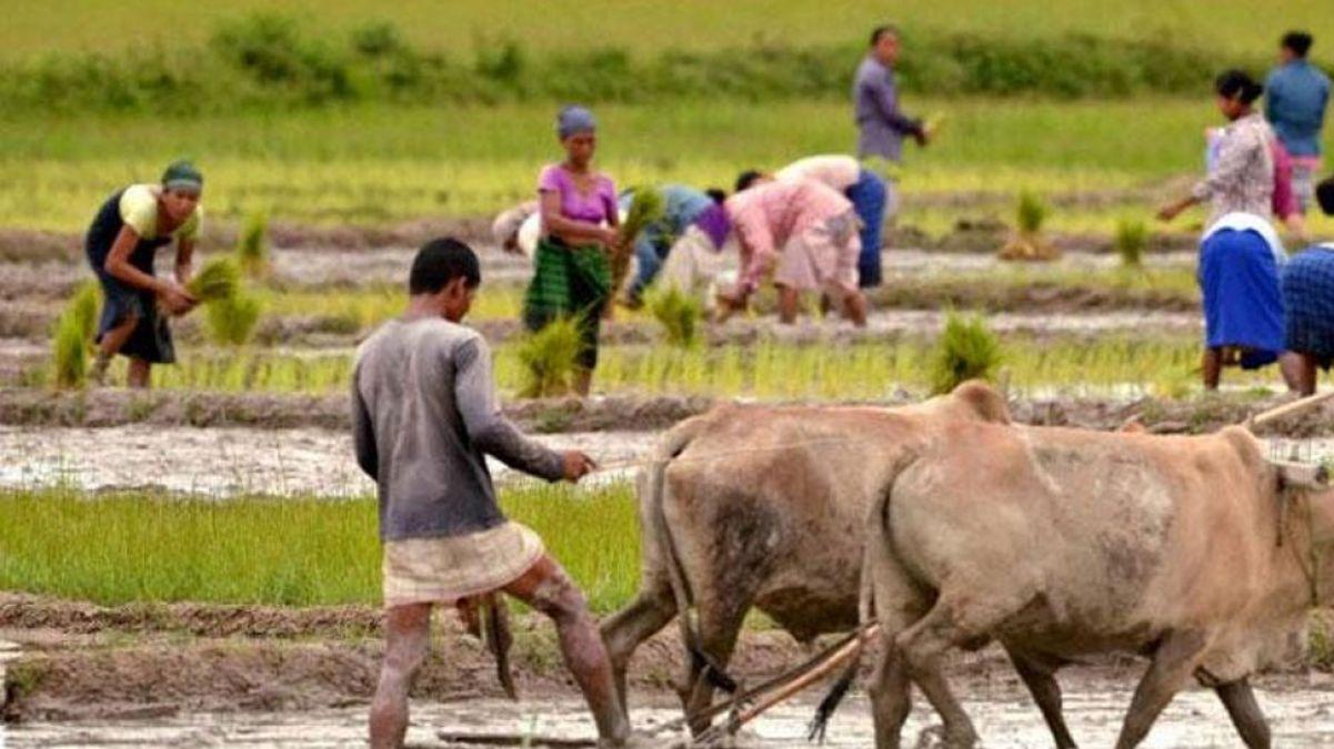 उत्तर प्रदेश में दर्दनाक हादसा, खेत में काम कर रही 5 महिलाओं की करंट लगने से मौत