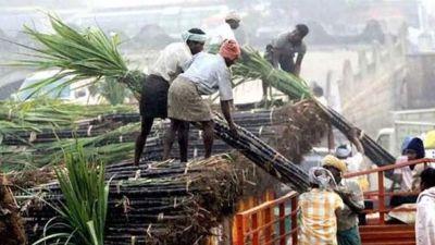 फसल का भुगतान ना मिलने पर आक्रोशित किसान, जिला गन्ना अधिकारी के दफ्तर पर किया प्रदर्शन