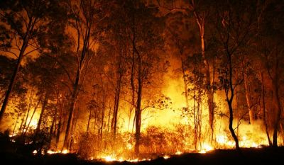 Fire breaks out in forest areas of Uttarakhand
