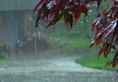 Heavy rains in these districts of Madhya Pradesh, warning issues