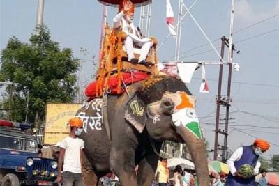 PM Modi rides elephant to crush Corona