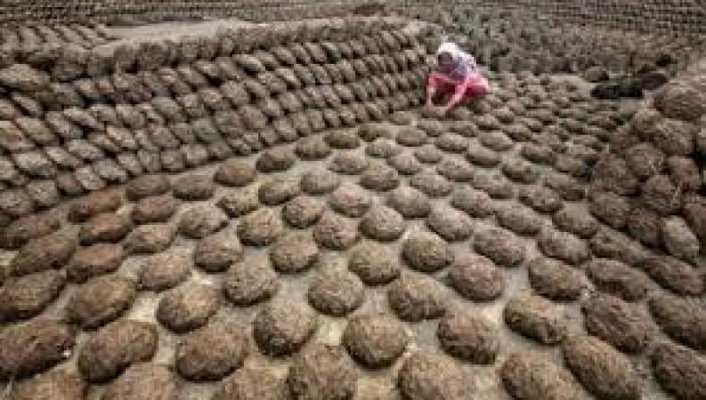 गर्मी से बचने के लिए पक्के मकानों पर बिछाए जा रहे है गोबर के कंडे