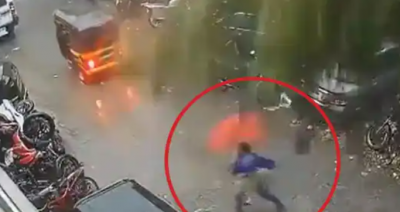 VIDEO viral: Woman moved away from the spot before the tree uprooted and fell there