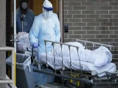 Bihar black fungus wreaks havoc, 12 patients killed in last 24 hours