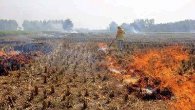 पराली जलाने को लेकर दर्ज हुई FIR, सड़कों पर उतरे नाराज़ किसान