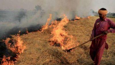 Punjab government strict on burning stubble, 22 farmers arrested, 45 FIR registered