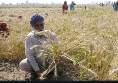 Big disclosure of loan waiver of farmers in Punjab, 338 crores not yet given
