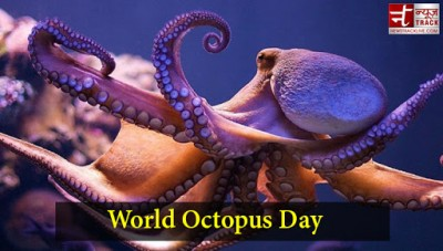 National Octopus Day: Here is all you need to know about this sea creature