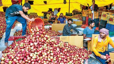 Modi government planning to uplift the apple growers of Kashmir