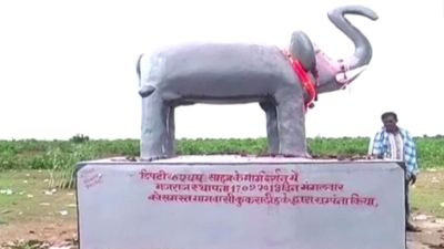 Chhattisgarh: Farmers have installed 'Gajraj' statue in their fields, know what is the reason