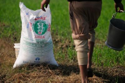 Fertilizer demand may remain high in this rabi season, Know the reason!