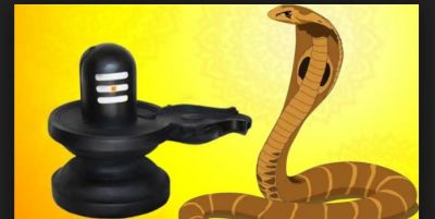 If you want to be rich, then do this on Nagpanchami