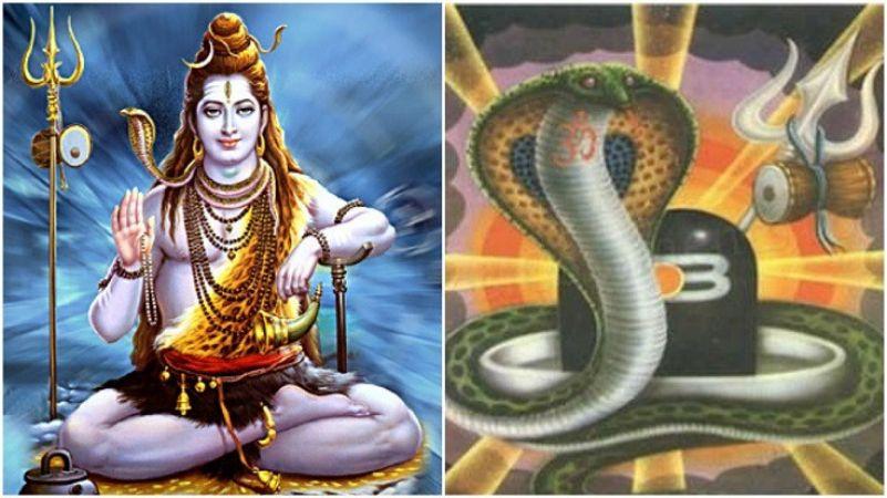 नागपंचमी पर करें नाग के 12 स्वरूपों की पूजा, जानें उनके 12 नाम