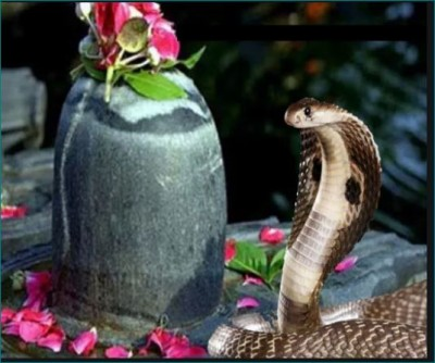 When and why Nag Panchami is celebrated, Know here