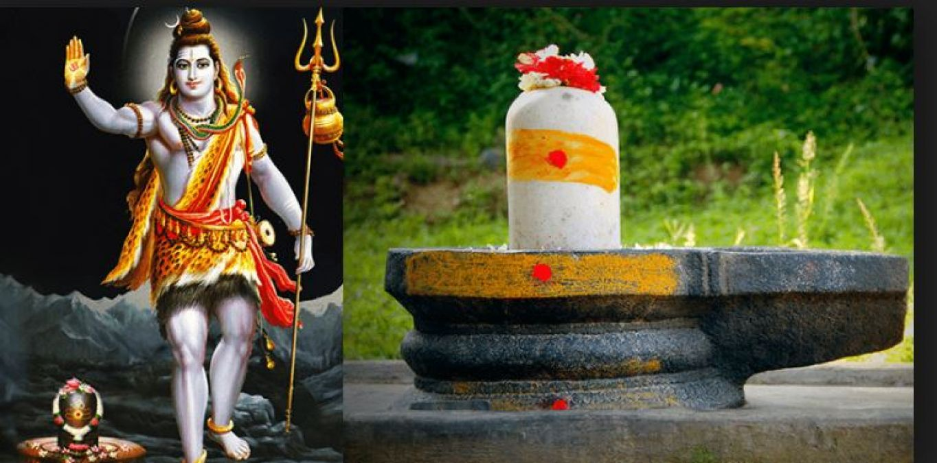 Never ever offer these 20 flowers to Lord Shiva or else...