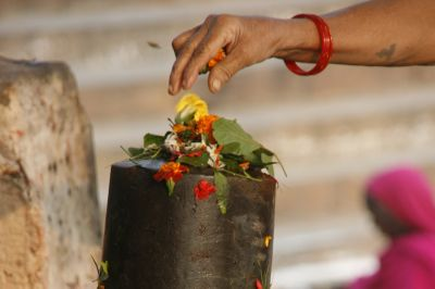 If you are unable to offer Bilva leaves to Lord Shiva daily, then offer one of these 4 leaves!