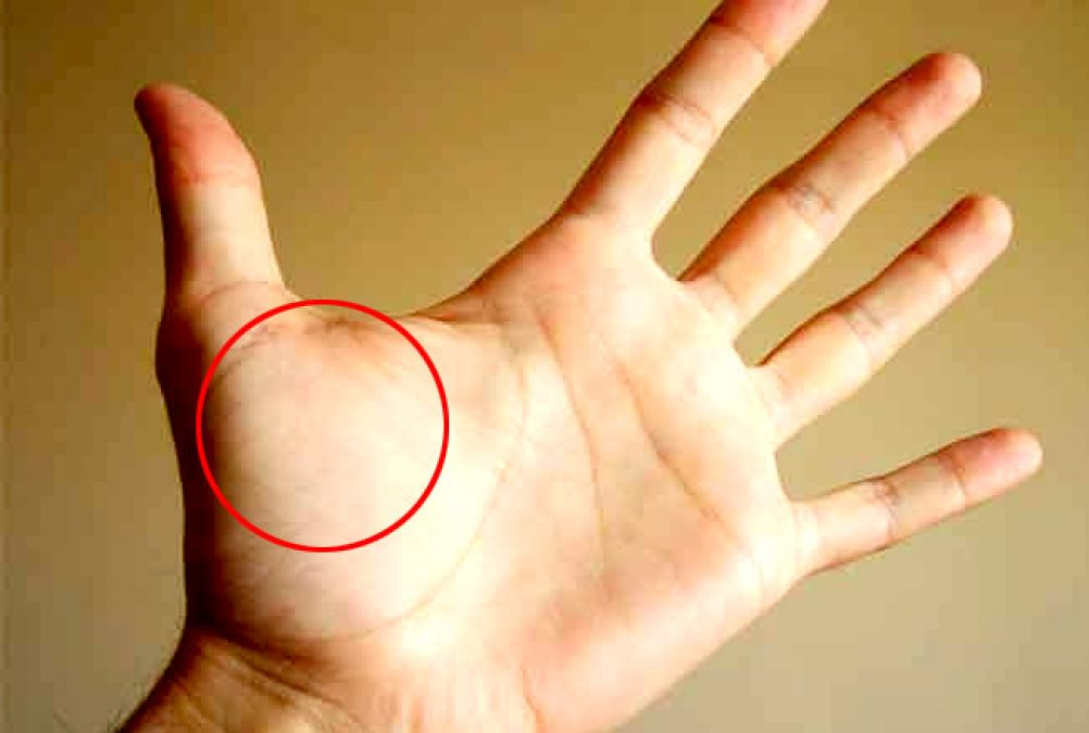 Mount Venus on your palm speaks a lot about you, Know more